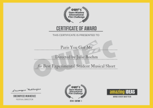 Paris You Got Me_Julie Boehm_Best Experiemental Student Musical Short